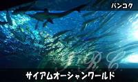 Siamocean